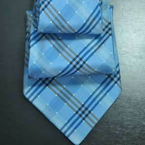 *NEW* Burberry Blue & Brown *Burberry PLAID* Tie